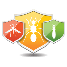 Termite, mosquito, and pest removal icon