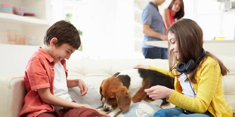 Two children on the couch playing with their dog.